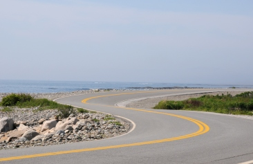 Curving scenic road in Acadia National Park